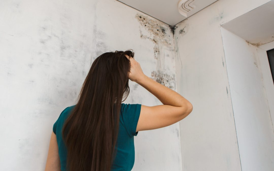 what causes mold to grow